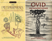 Metamorfose uitgelicht