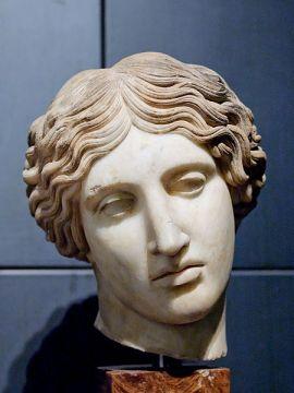 Hoofd van een Amazone, Sala degli Orti Mecenate (Capitolijnse Musea)