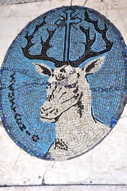 Hertenkop op de drempel van Bar S. Eustachio