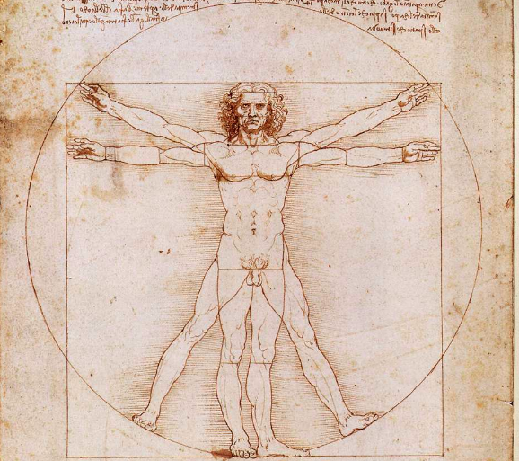 Waarom Da Vinci's Vitruviusman zo beroemdis