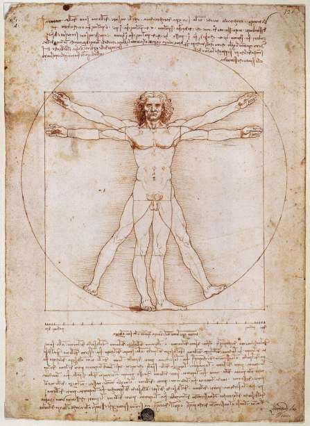 Vitruviusman-Da-Vinci