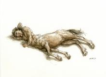 13_1370610673_centaur