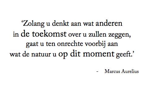 Marcus Aurelius over de kracht van hetnu