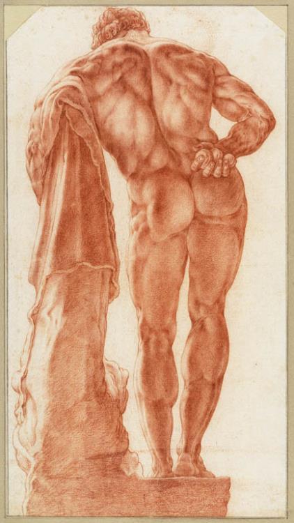 Hendrick Goltzius (Bracht-am-Niederrhein 1558-1617 Haarlem), The Farnese Hercules Seen from Behind, 1591. Red chalk, indented for transfer, 390 x 215 mm. The Teylers Museum, Haarlem, inv. N 19