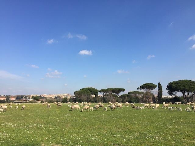 Via-Appia-Park